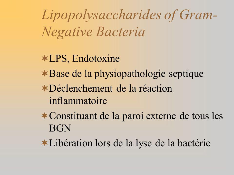 Lipopolysaccharides of Gram-Negative Bacteria