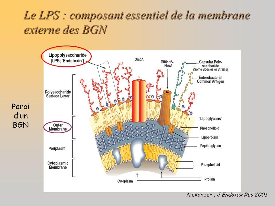 Le LPS : composant essentiel de la membrane externe des BGN