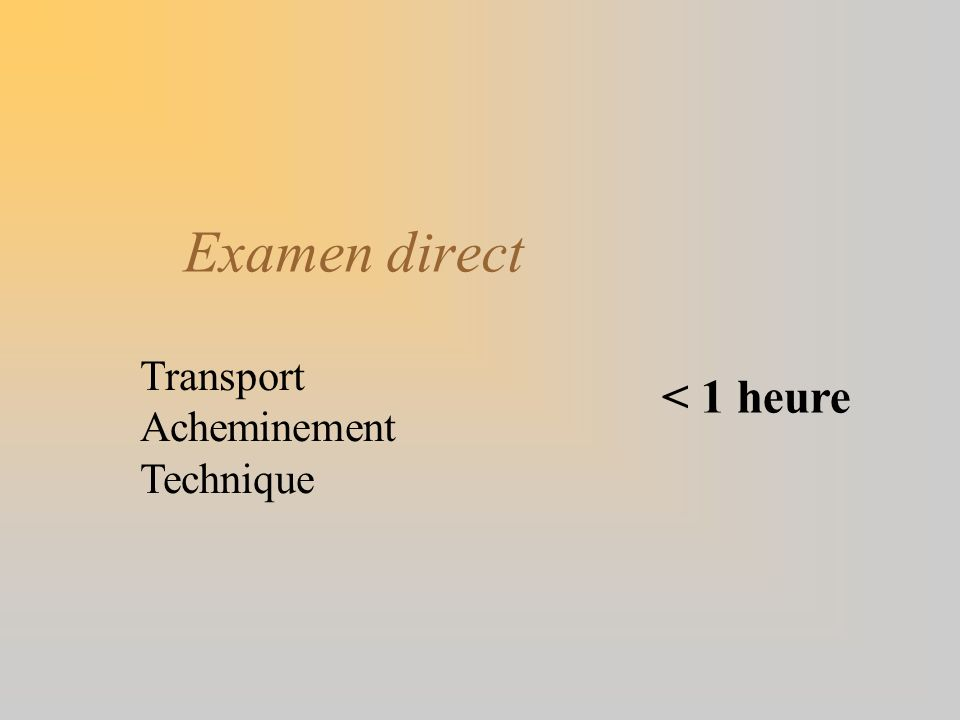 Examen direct Transport Acheminement Technique < 1 heure