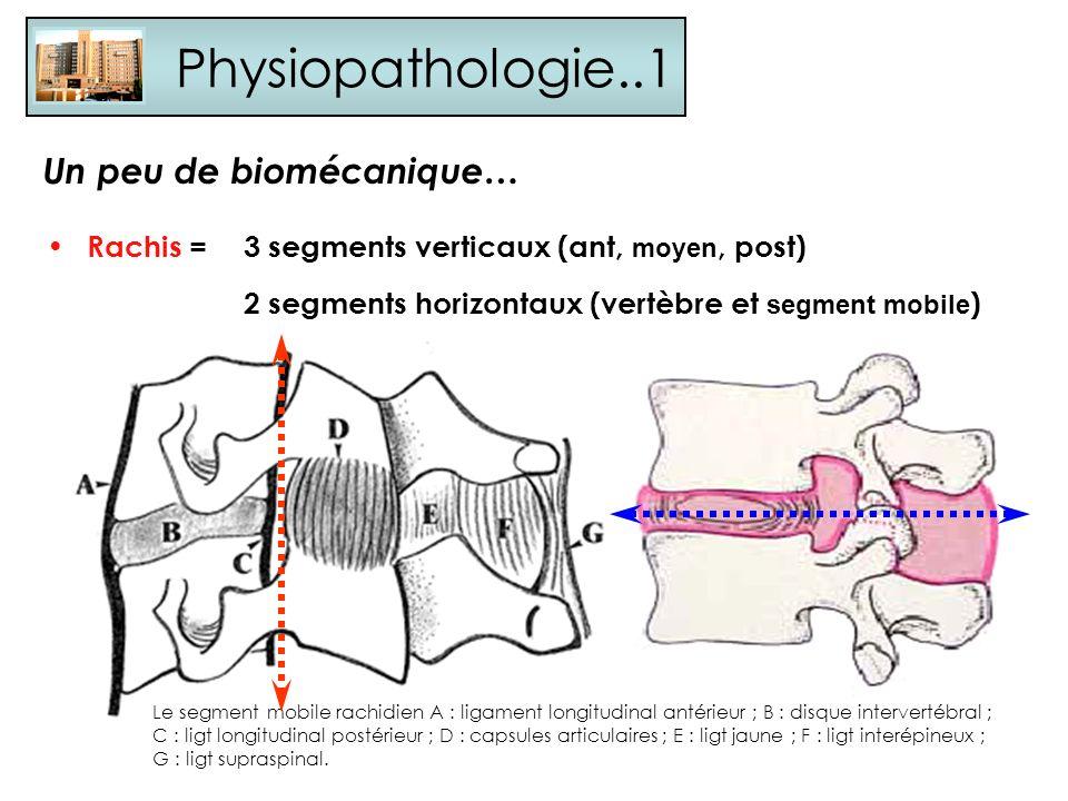 Physiopathologie..1 Un peu de biomécanique…
