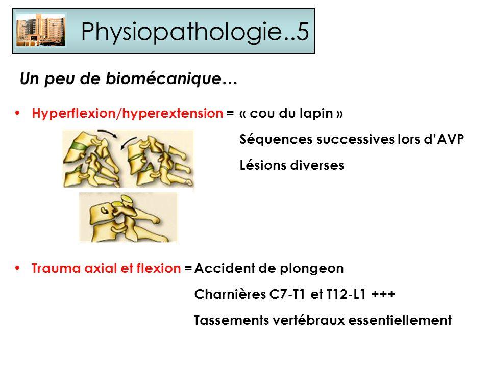 Physiopathologie..5 Un peu de biomécanique…