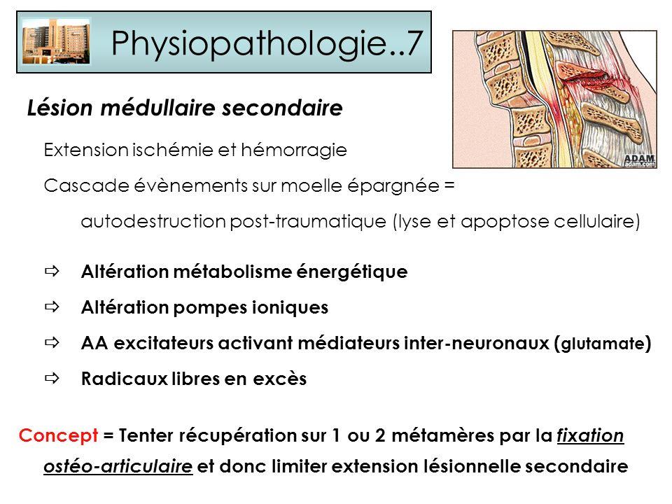 Physiopathologie..7 Lésion médullaire secondaire