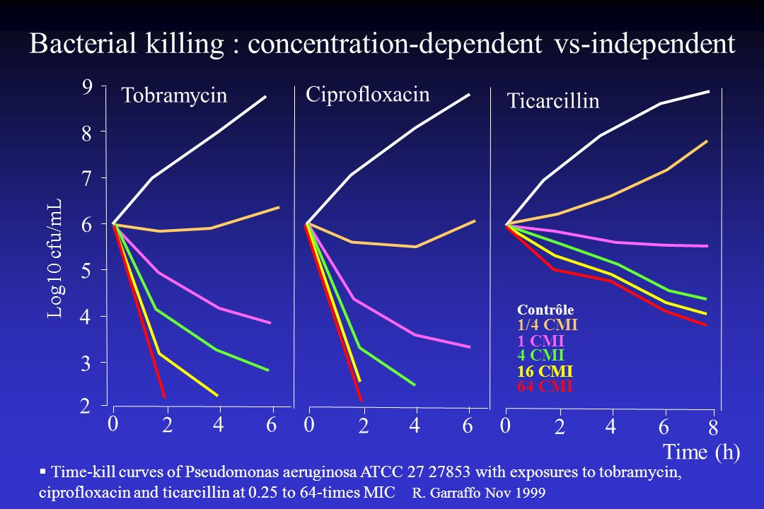 Bacterial killing : concentration-dependent vs-independent