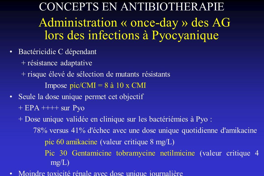 CONCEPTS EN ANTIBIOTHERAPIE Administration « once-day » des AG lors des infections à Pyocyanique
