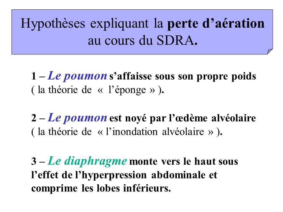 Hypothèses expliquant la perte d'aération au cours du SDRA.