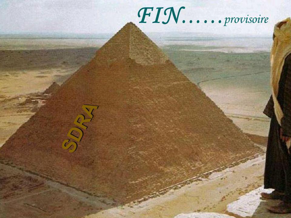 FIN……provisoire SDRA