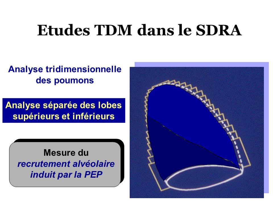 Etudes TDM dans le SDRA Analyse tridimensionnelle des poumons