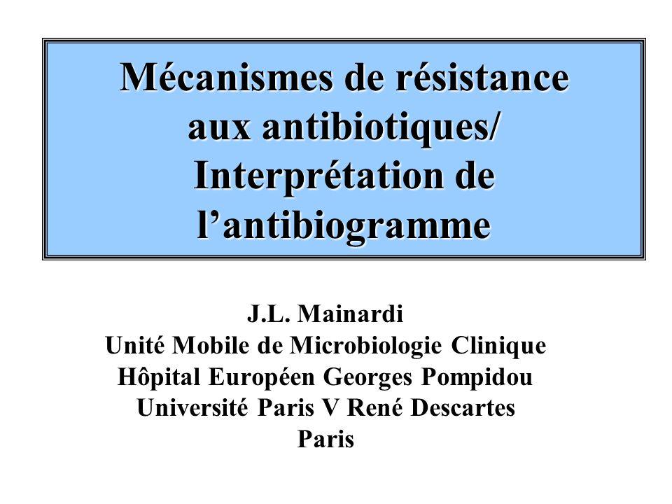 Mécanismes de résistance aux antibiotiques/ Interprétation de l'antibiogramme