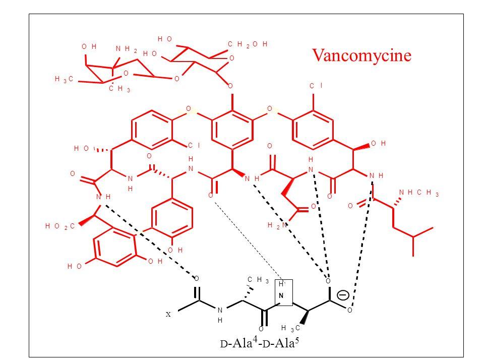 O C l H N 3 2 X Vancomycine D-Ala4-D-Ala5
