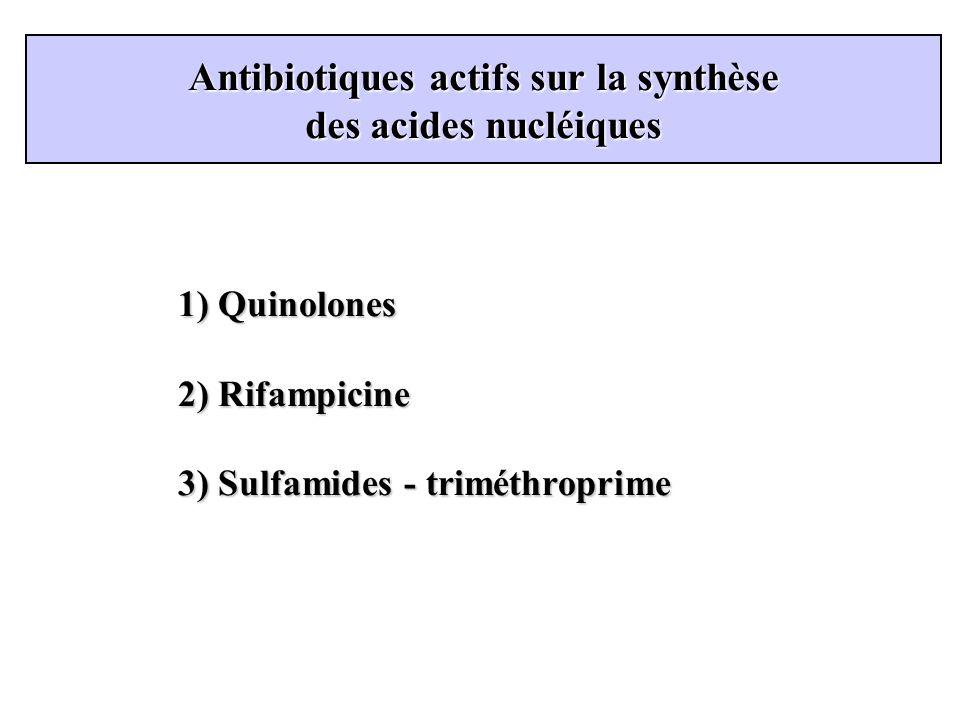 Antibiotiques actifs sur la synthèse des acides nucléiques