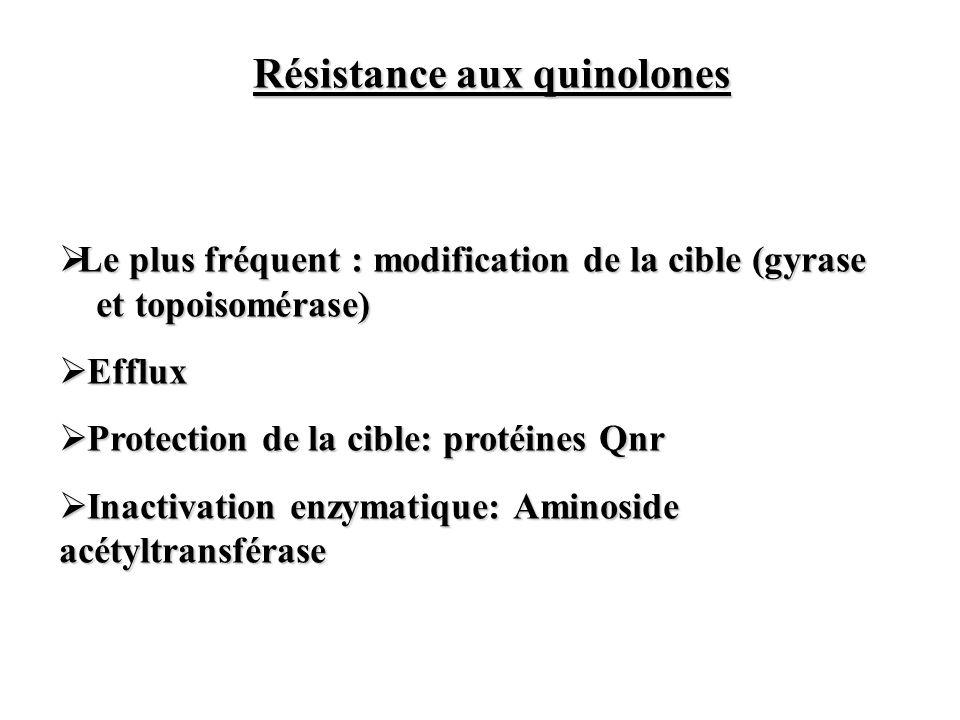 Résistance aux quinolones