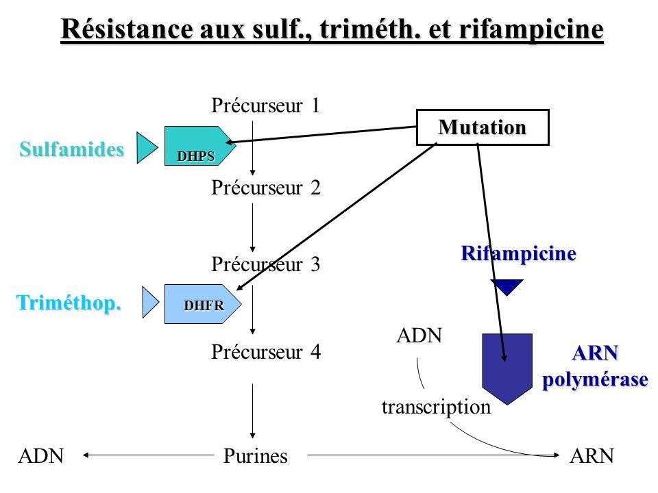 Résistance aux sulf., triméth. et rifampicine