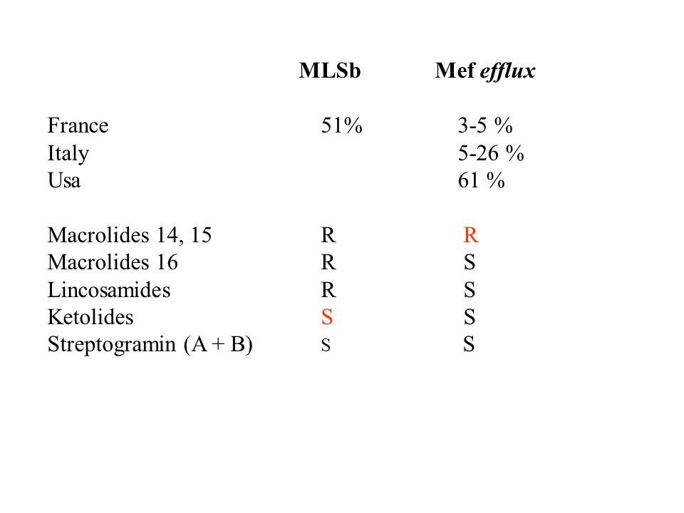 MLSb Mef effluxFrance 51% 3-5 % Italy 5-26 % Usa 61 % Macrolides 14, 15 R R.