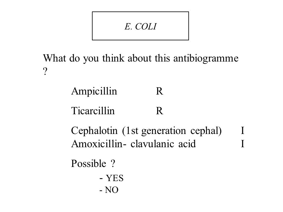What do you think about this antibiogramme Ampicillin R