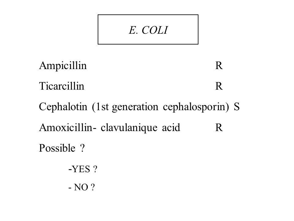 Cephalotin (1st generation cephalosporin) S