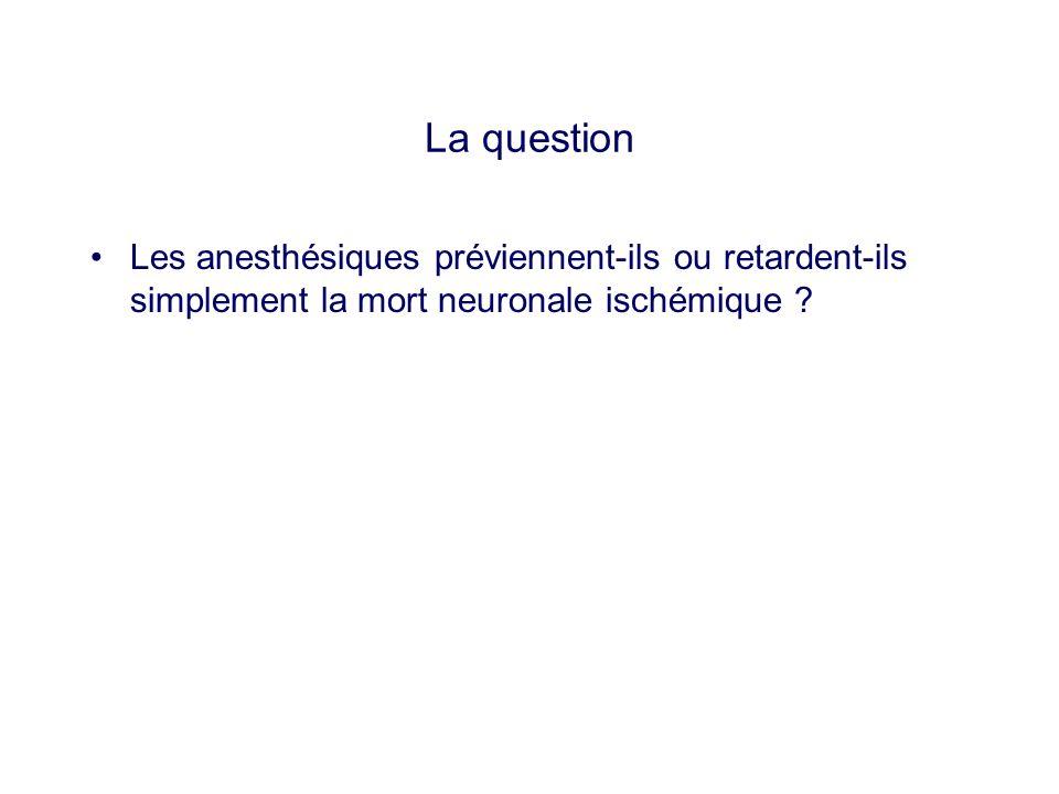 La question Les anesthésiques préviennent-ils ou retardent-ils simplement la mort neuronale ischémique