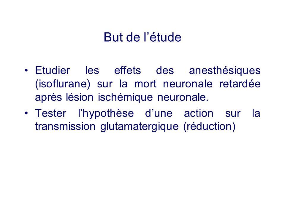 But de l'étudeEtudier les effets des anesthésiques (isoflurane) sur la mort neuronale retardée après lésion ischémique neuronale.