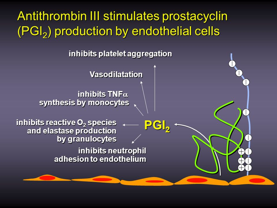 Antithrombin III stimulates prostacyclin (PGI2) production by endothelial cells
