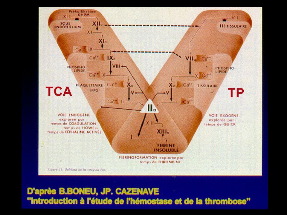 TCA TP