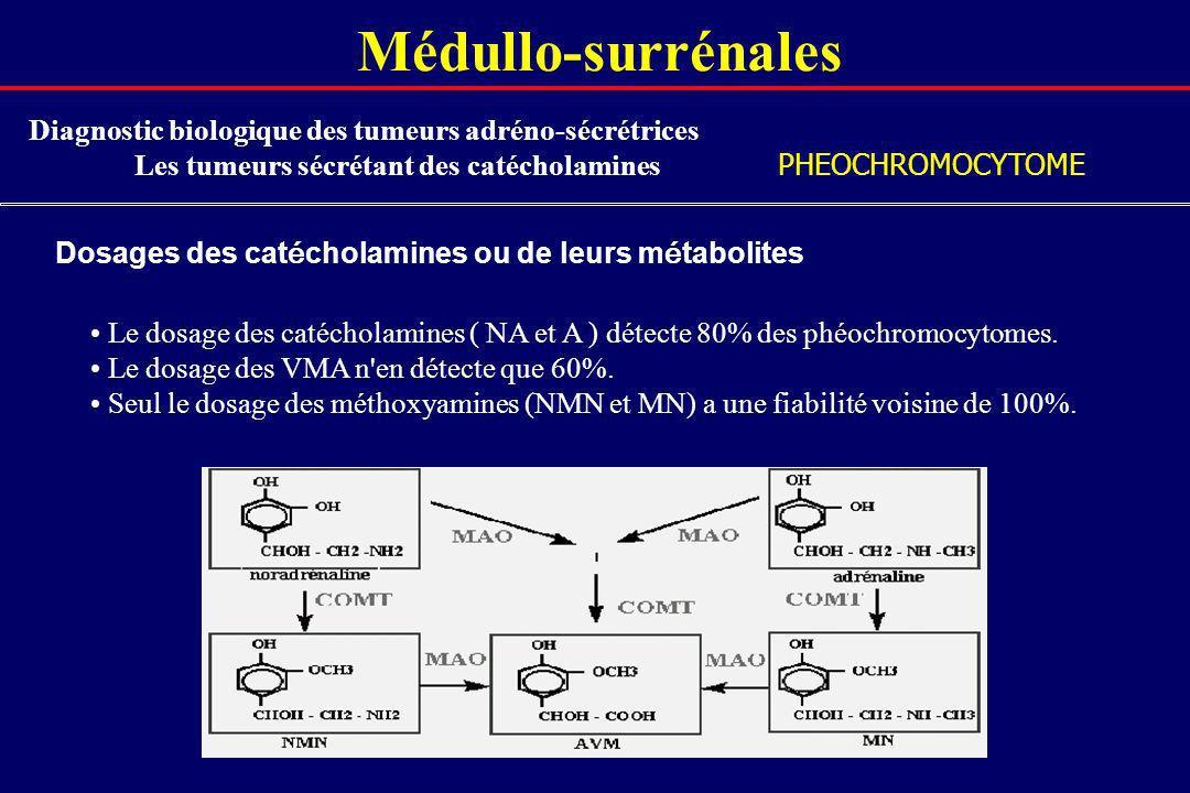 Médullo-surrénalesDiagnostic biologique des tumeurs adréno-sécrétrices. Les tumeurs sécrétant des catécholamines.