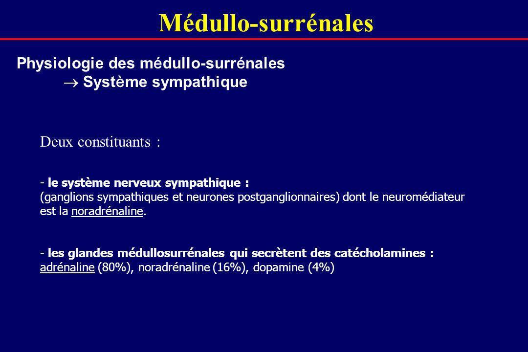 Médullo-surrénales Physiologie des médullo-surrénales