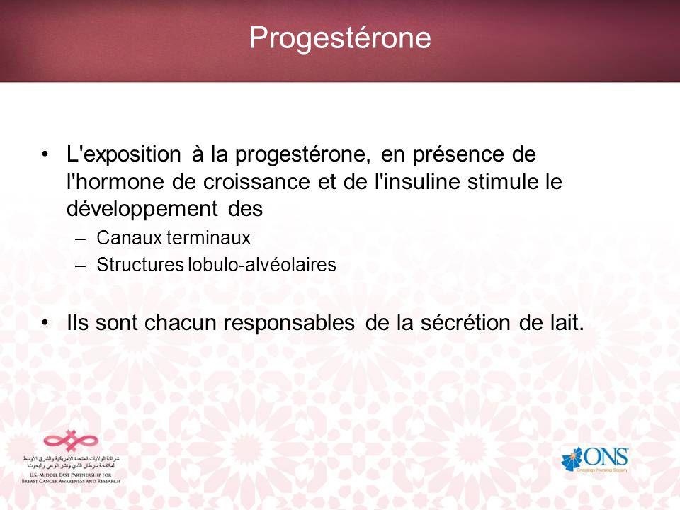 Progestérone L exposition à la progestérone, en présence de l hormone de croissance et de l insuline stimule le développement des.
