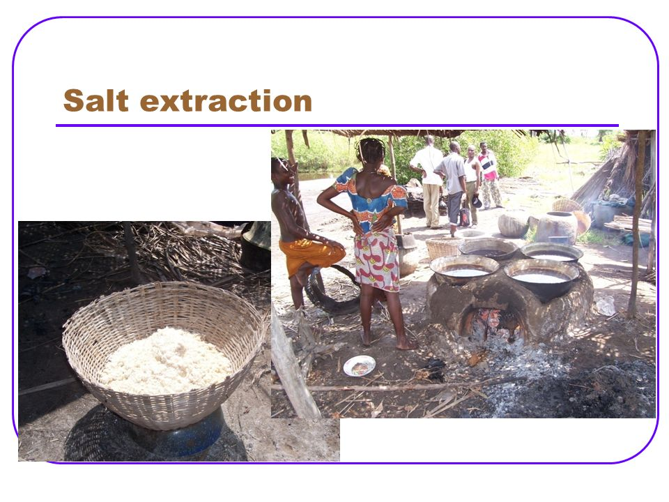 Salt extraction Self salt extraction by rural people doesn't contains added iodine.