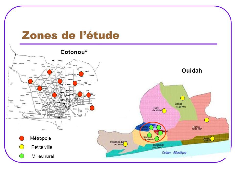 Zones de l'étude Cotonou* Ouidah Métropole Petite ville Milieu rural