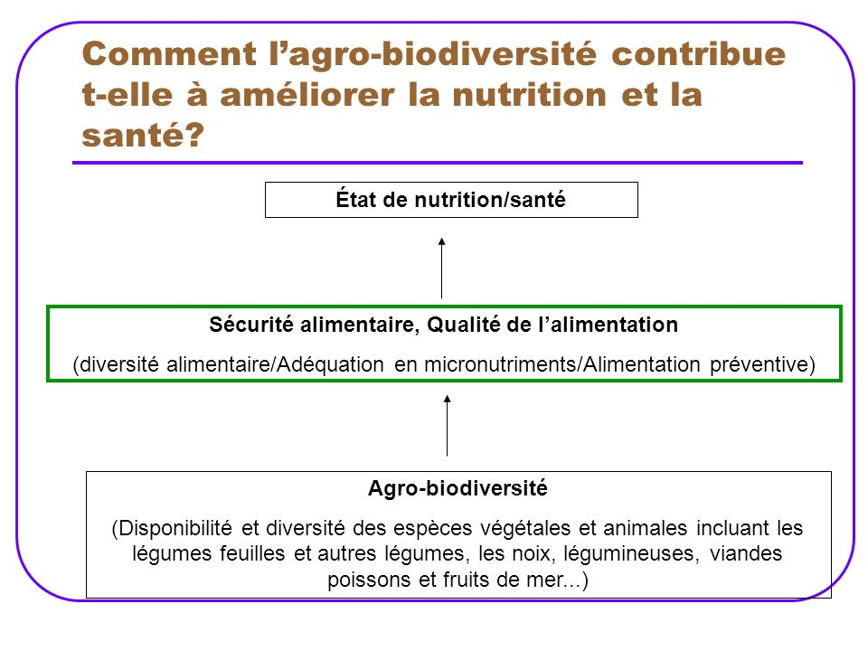 Comment l'agro-biodiversité contribue t-elle à améliorer la nutrition et la santé
