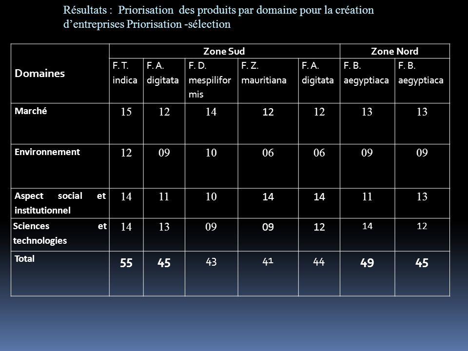 Résultats : Priorisation des produits par domaine pour la création d'entreprises Priorisation -sélection