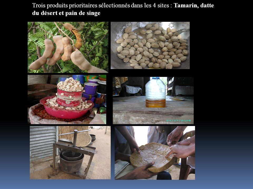 Trois produits prioritaires sélectionnés dans les 4 sites : Tamarin, datte du désert et pain de singe