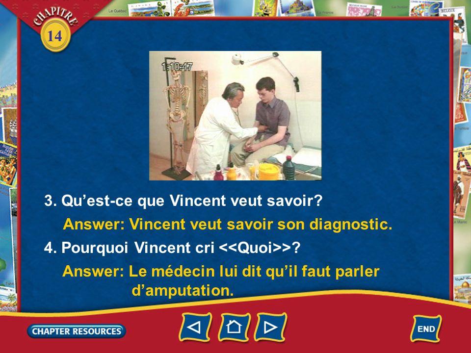 3. Qu'est-ce que Vincent veut savoir
