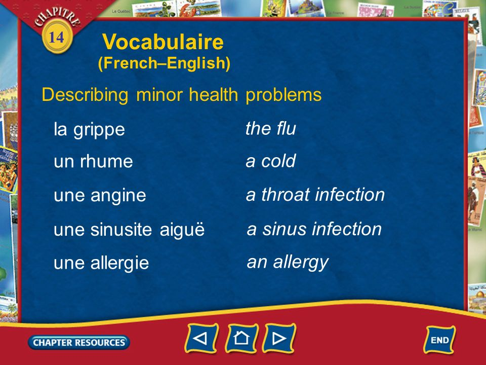 Vocabulaire Describing minor health problems la grippe the flu