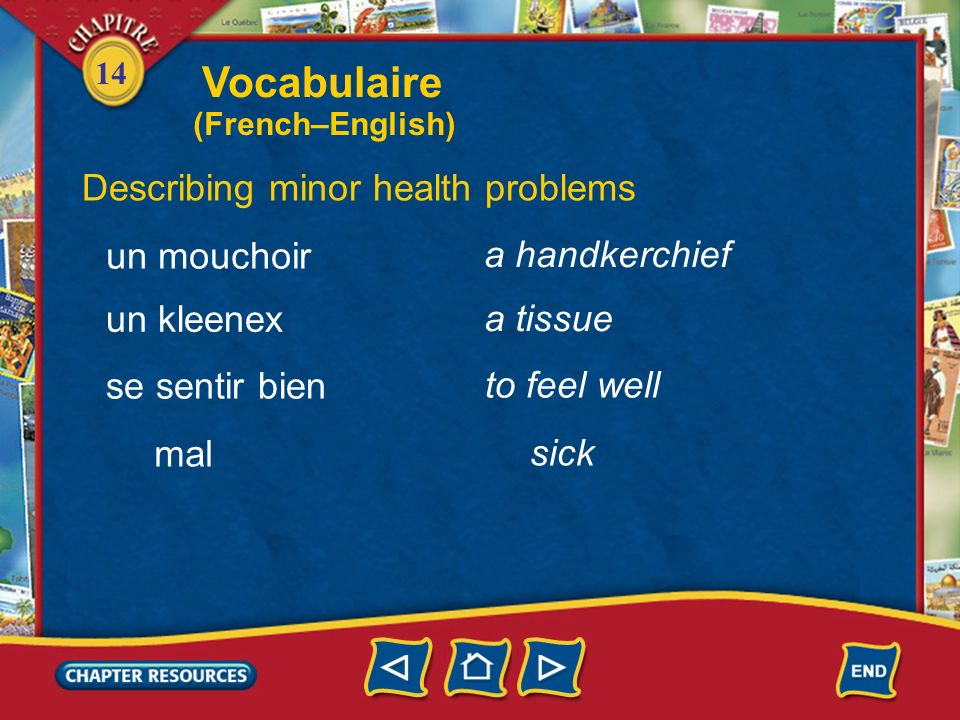 Vocabulaire Describing minor health problems un mouchoir