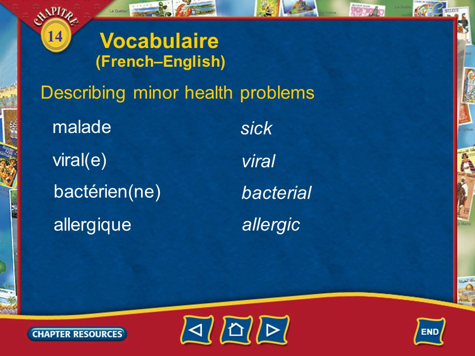 Vocabulaire Describing minor health problems malade sick viral(e)