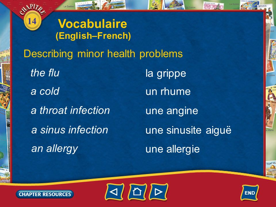 Vocabulaire Describing minor health problems the flu la grippe a cold
