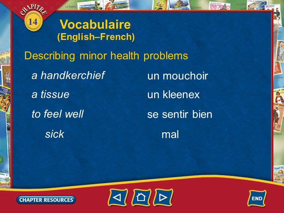Vocabulaire Describing minor health problems a handkerchief