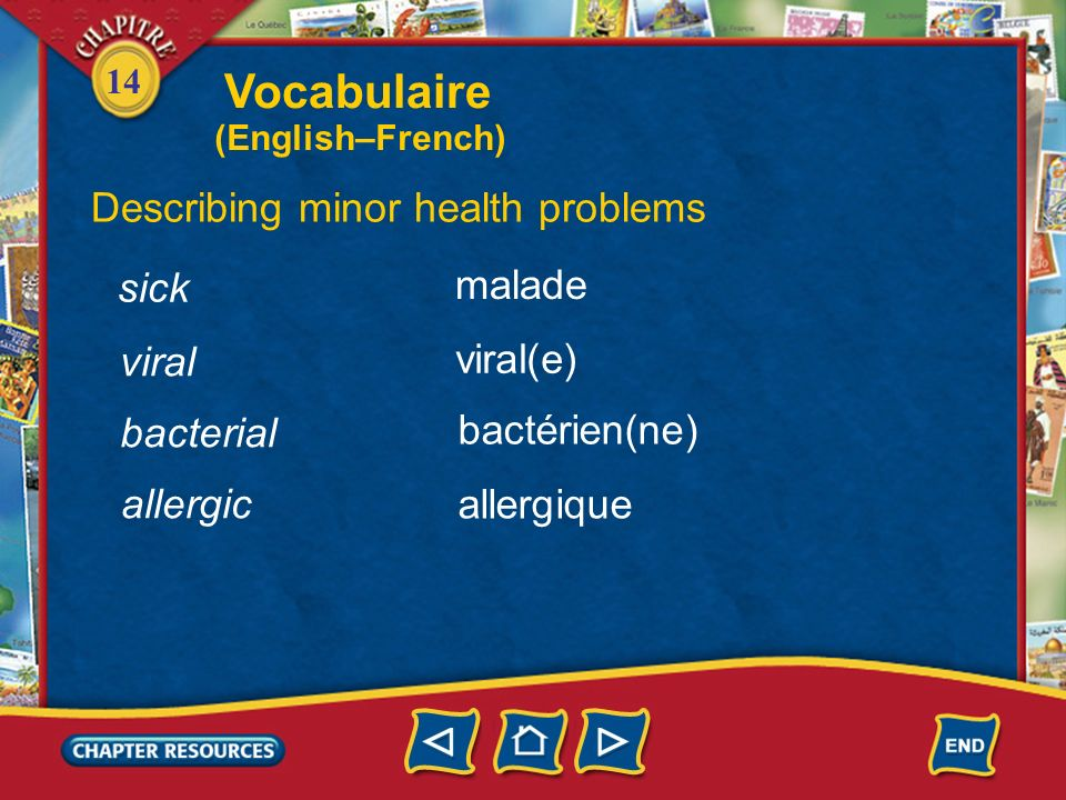 Vocabulaire Describing minor health problems sick malade viral