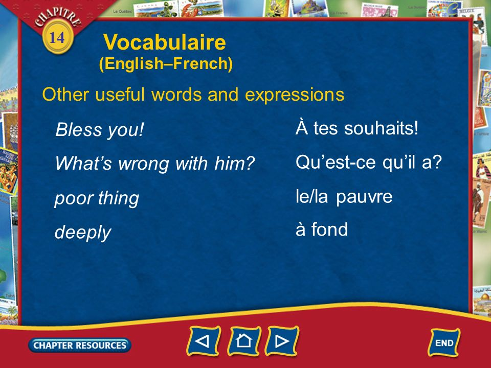 Vocabulaire Other useful words and expressions Bless you!