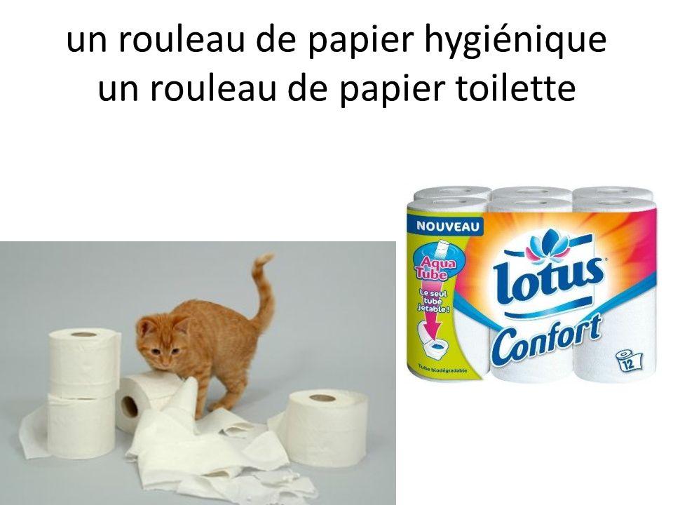 un rouleau de papier hygiénique un rouleau de papier toilette