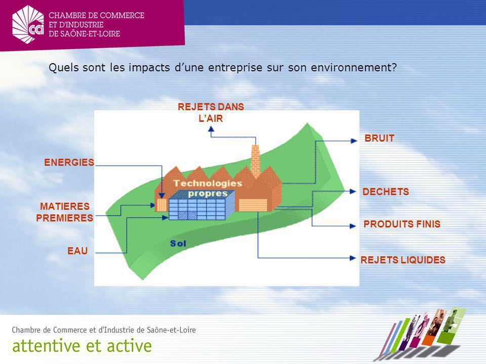 Quels sont les impacts d'une entreprise sur son environnement