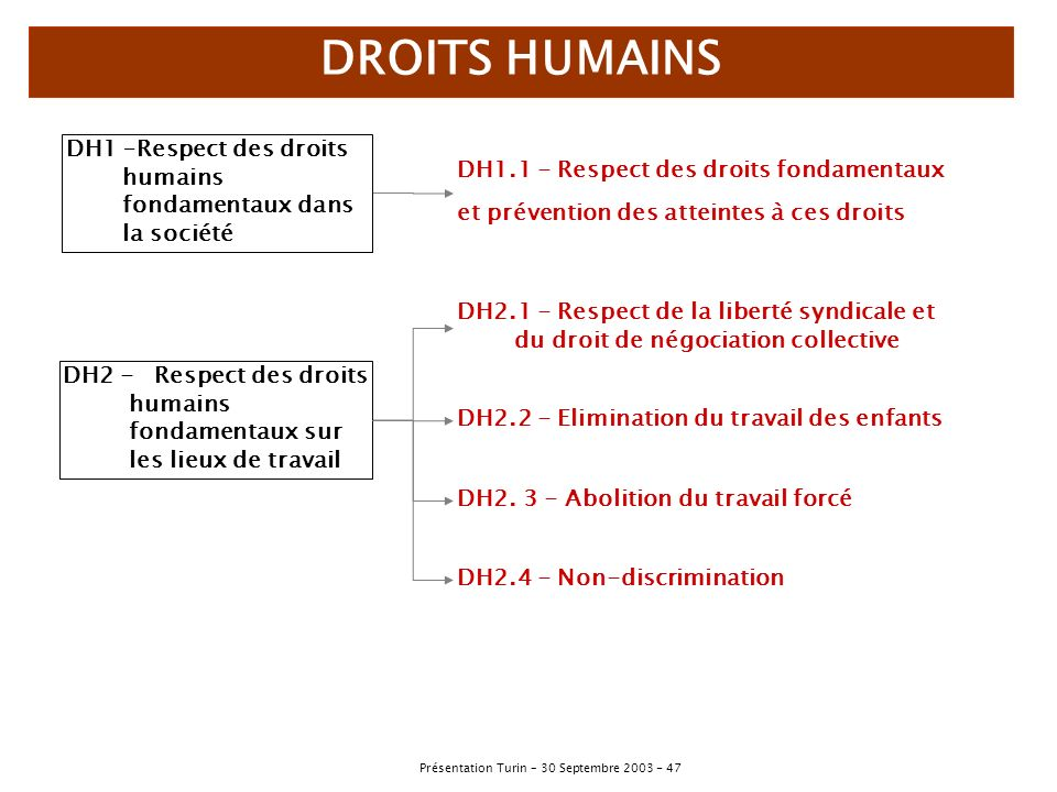 DROITS HUMAINS DH1 –Respect des droits humains fondamentaux dans la société. DH1.1 - Respect des droits fondamentaux.