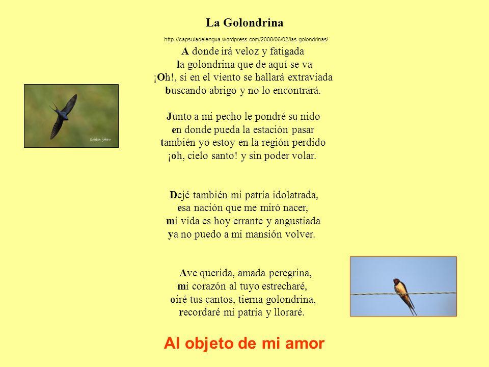 Al objeto de mi amor La Golondrina
