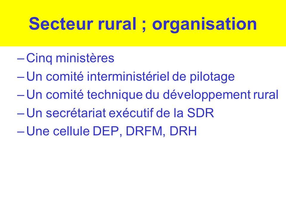 Secteur rural ; organisation