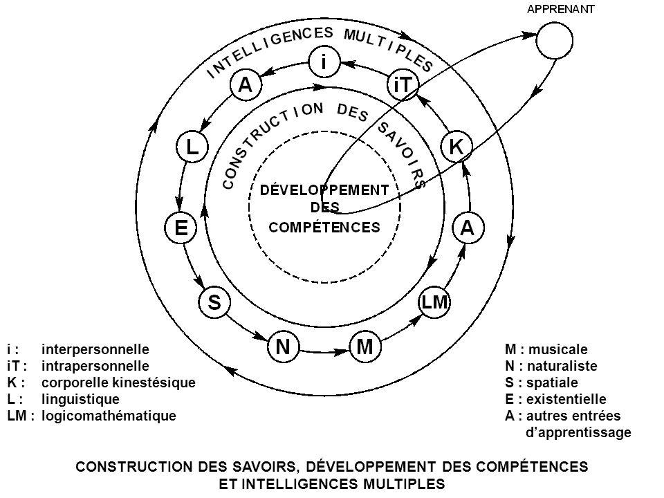 i : interpersonnelle iT : intrapersonnelle. K : corporelle kinestésique. L : linguistique. LM : logicomathématique.
