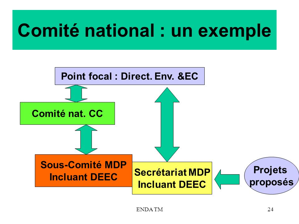 Comité national : un exemple
