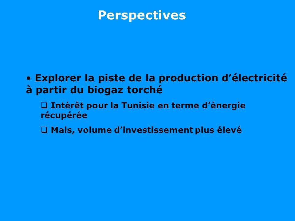 Perspectives Explorer la piste de la production d'électricité à partir du biogaz torché. Intérêt pour la Tunisie en terme d'énergie récupérée.
