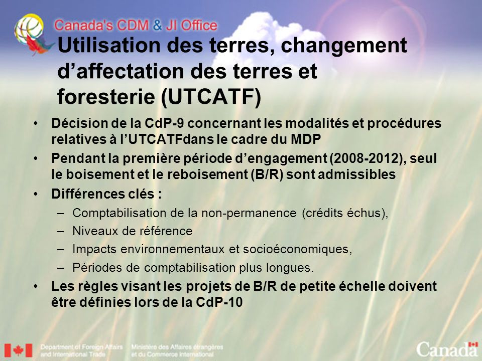 Utilisation des terres, changement d'affectation des terres et foresterie (UTCATF)