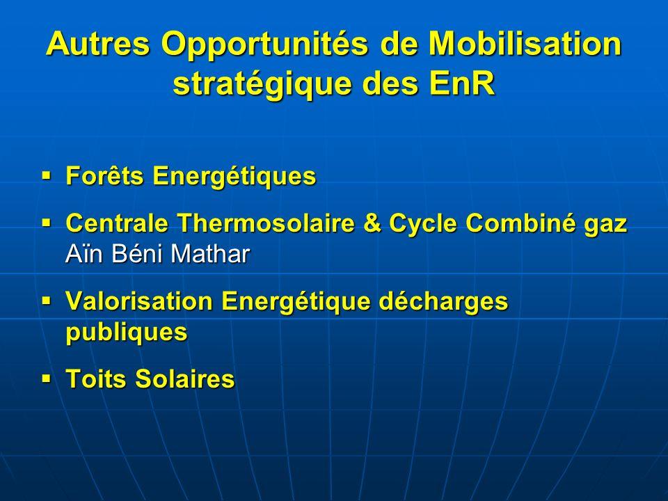 Autres Opportunités de Mobilisation stratégique des EnR