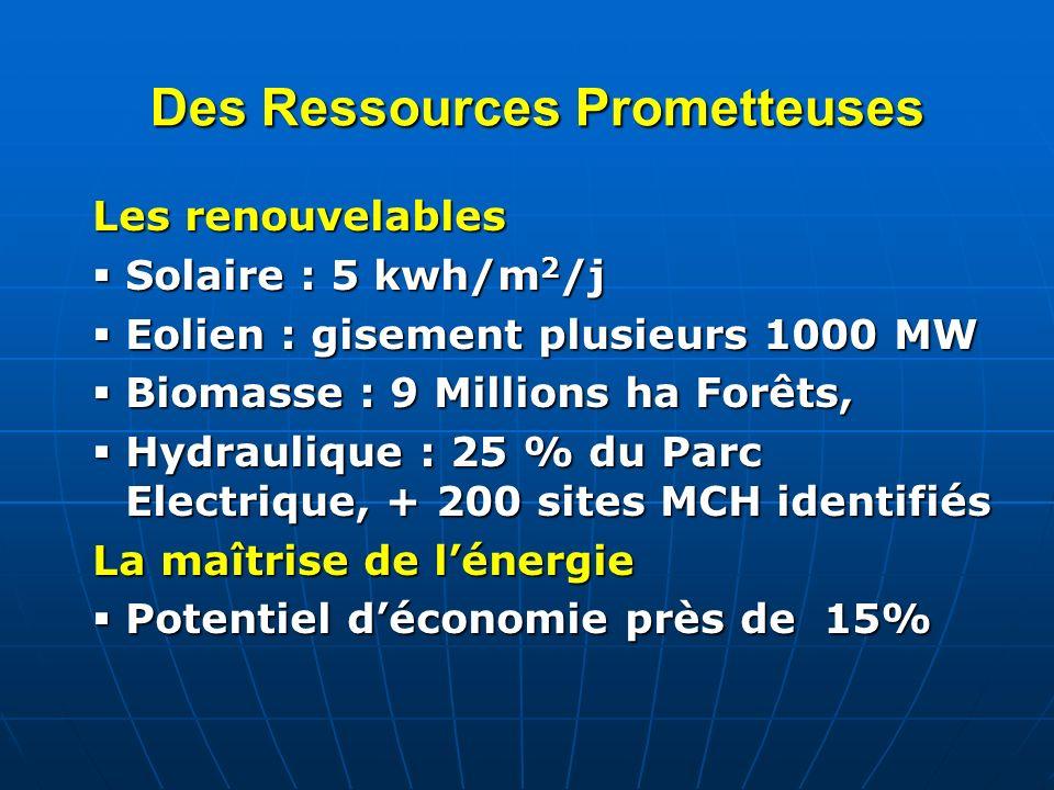 Des Ressources Prometteuses